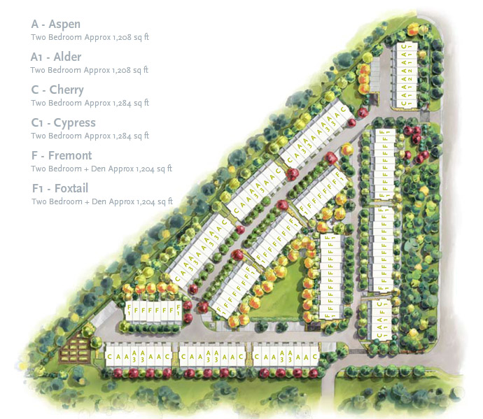 The official Westwood Coquitlam siteplan.