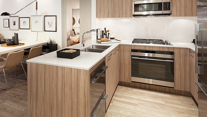North Van x61 kitchen finishes.