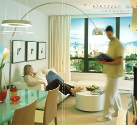 The re-sale Vancouver apartments at Electric Avenue condos are affordable, spacious and well-located.