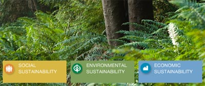 City of North Vancouver Sustainability involves three main areas: environmental, economic and social and with green building techniques, improvements in North Shore liveability and a North Vancouver Official Community Plan for the next 100 years, this municipality has a lot going for it.